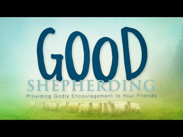 Good Shepherding-Part 2