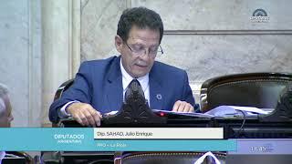Diputado Sahad Julio Enrique - Sesión 18-12-2018 - Pl