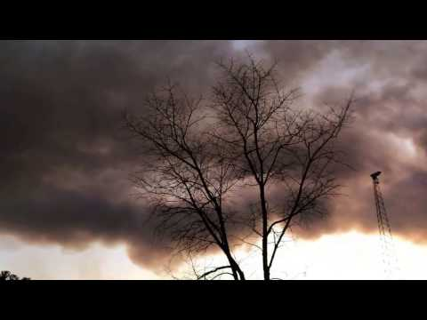 Concerning forest fire | Ocean County, NJ