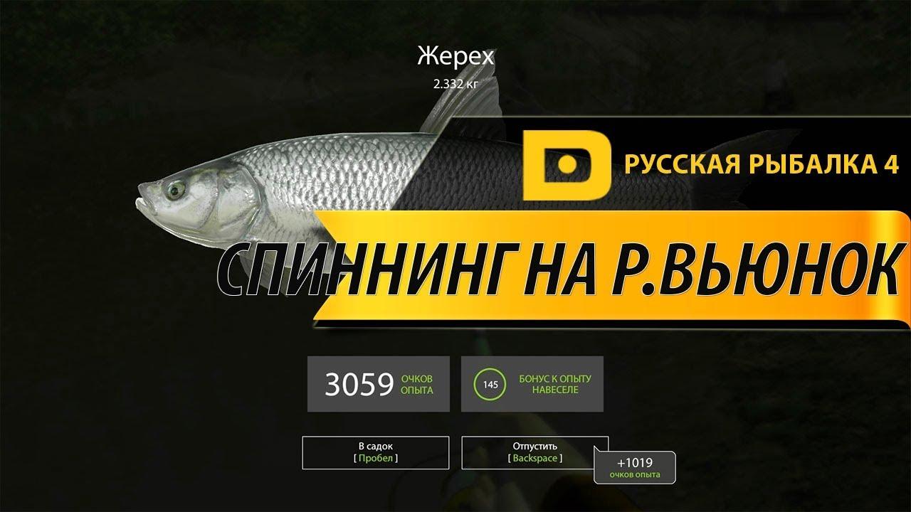 Русская рыбалка 4 - река Вьюнок - Щука на вертушку Aikkila