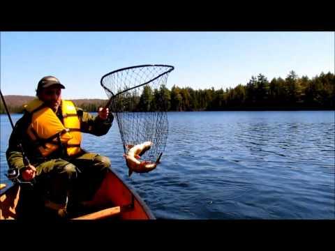 Algonquin Park Fishing Trip