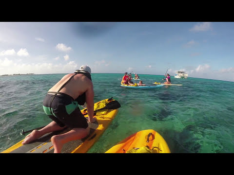 Grand Turk paddleboard and snorkel tour