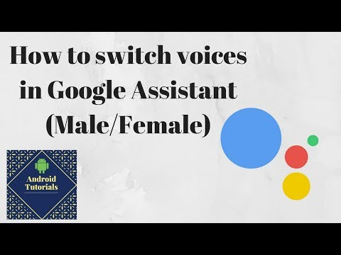 How to switch voices in Google Assistant (Male/Female)