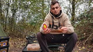 Tipps und Tricks zum Flussangeln auf Karpfen - erfolgreicher angeln am Fließgewässer!