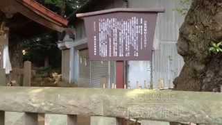 小豆沢神社---東京都板橋区