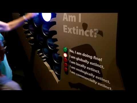 Interactive Exhibits at the Aquarium of the Pacific, Long Beach, California!