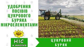 Удобрення  посівів цукрового буряка мікроелементами | Органомінеральне добриво з фунгіцидною дією