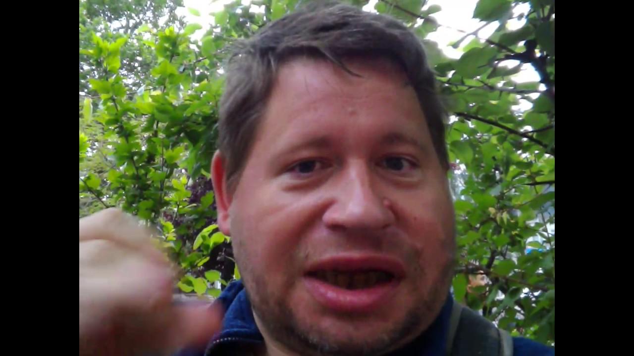 Мохнатая клкбничка видео фото 382-257