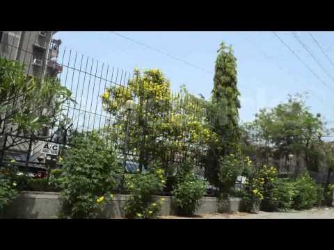 Property In Dwarka Sector-10 New Delhi, Flats In Dwarka Sector-10