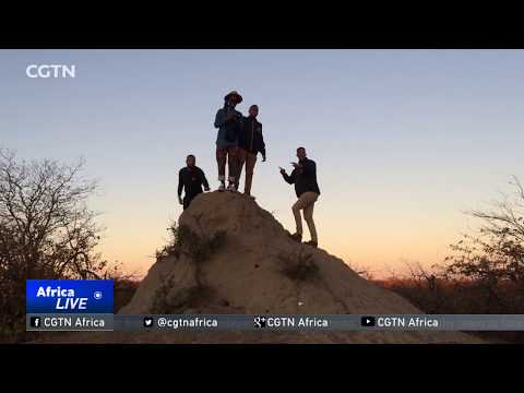 South Africa's Born Free from YouTube · Duration:  17 minutes 34 seconds