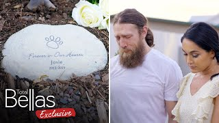 Brie & Bryan mourn the loss of Josie at her funeral - Total Bellas Exclusive