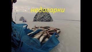 ловля плотвы на Кременчугском  водохранилище
