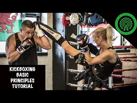 Kickboxing Basic Principles Tutorial