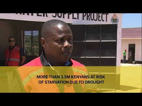 More than 3.5M Kenyans at risk of starvation due to drought