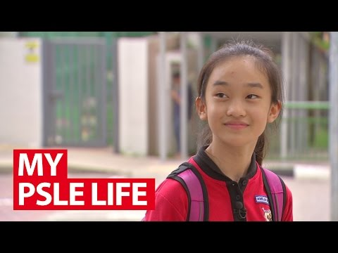 My PSLE Life | Talking Point | CNA Insider