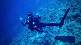 Red Sea scuba diving !!!
