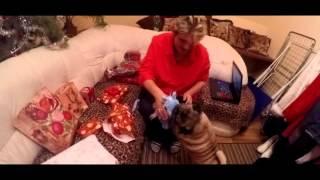 Vánoční vlog s Mámou a Kennym