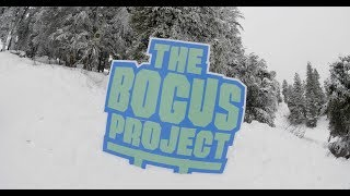 BMBW at The Bogus Project