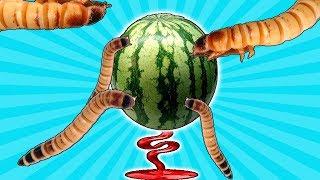 😱MONSTER WÜRMER sind da! - Wie viel Melone essen Sie in 24 Stunden 🍈?