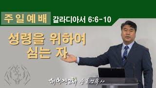 [새생명교회 송호영목사] 성령을 위하여 심는 자 (갈6…