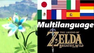 Silent Princess Multilanguage | Memory 9 | Zelda Breath of the Wild