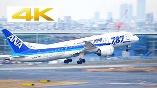 [4k] [飛行機 動画] 787 Dreamliner at Japan