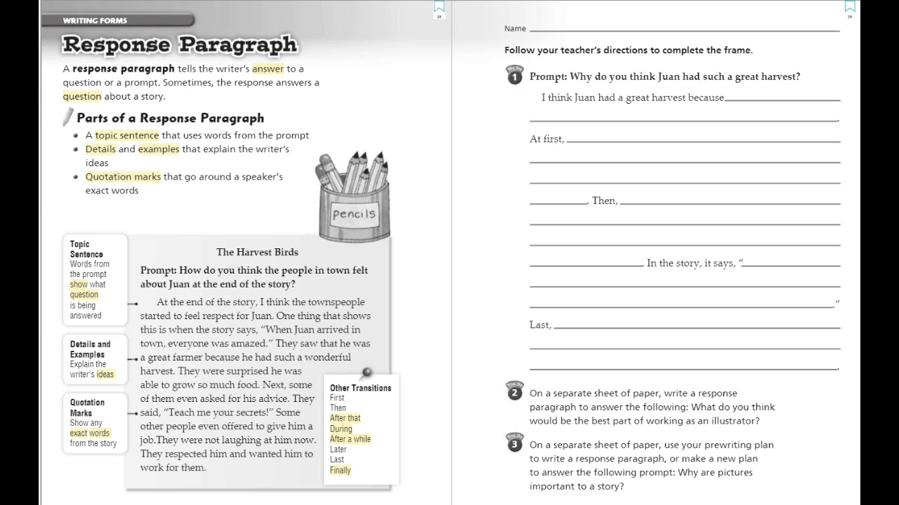 why are paragraphs important