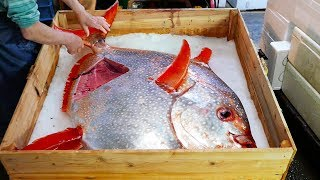 Nhật Bản Thực ăn đường phố -  Cá mặt trời Hải sản sashimi Tokyo