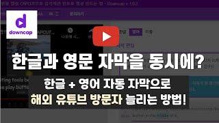 유튜버 영어 자동 자막 넣는법, 다운캡(DownCap)…