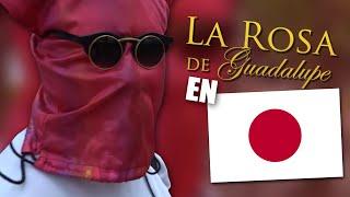 LA ROSA DE GUADALUPE EN JAPÓN
