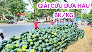 Xót xa khi thấy dưa hấu xếp đầy vỉa hè Sài Gòn chỉ 6k/kg mà khách vắng hue | Saigon Travel