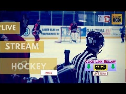 hockey liga live