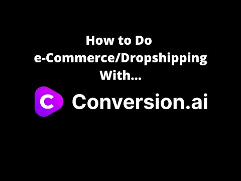How to do e-Commerce & Dropshipping with Conversion.ai