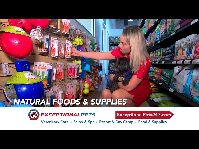 Exceptional Pets -- Pet supply deals in 2020!
