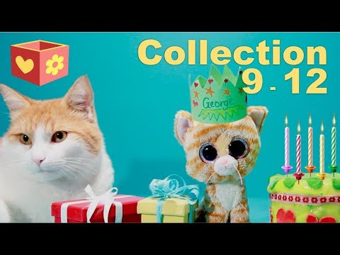Cute cat Simba | Collection | Video for children to watch