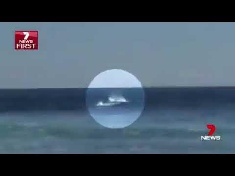 Shark attack, Video shows