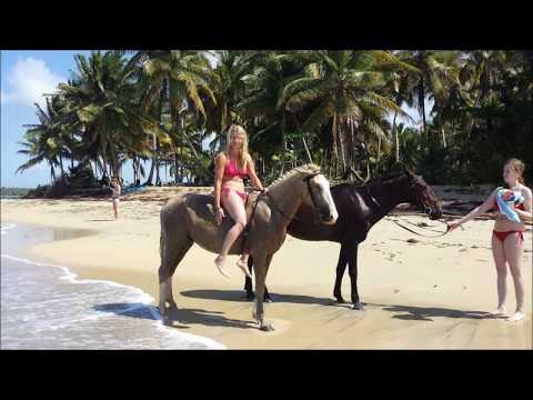 Karibik   Reiten am Strand  horse beach