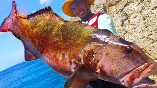 怪物だらけの磯で謎の巨大魚が釣れました【波照間島遠征2020 #6】