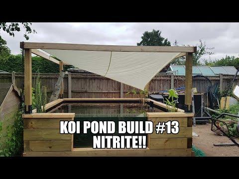 Koi Pond Build #13 Nitrite