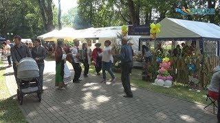 Самый вкусный и хрустящий праздник. «День Огурца» прошел в Шклове 10 августа