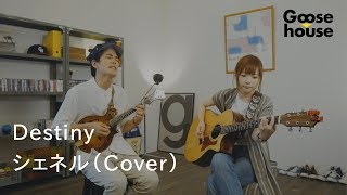 Destiny/シェネル(Cover)
