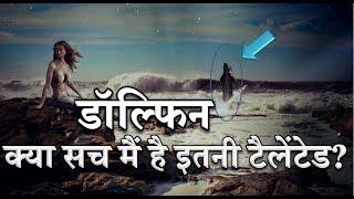 [Hindi]डॉल्फिन क्या सच मैं है इतनी टैलेंटेड?ll DOLPHIN does truly this much TALLENTED?ll