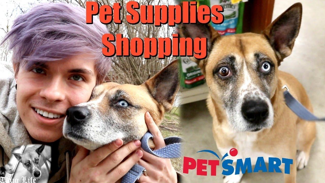 pet-supplies-shopping-with-nova