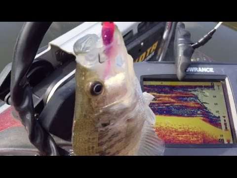 """""""LIVE"""" Crappie Fishing Tips - No Editing! """"Catching Suspended Crappie"""""""