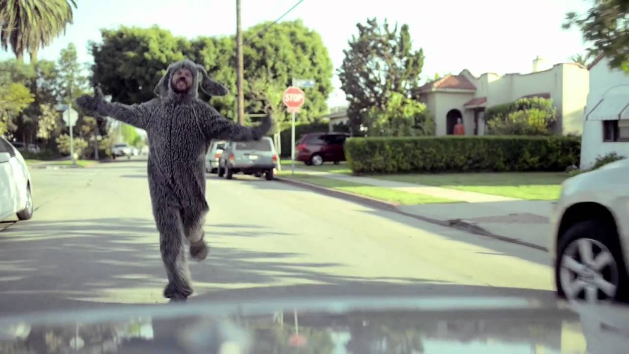 Download Wilfred Season 4 Promo - Wilfred is back