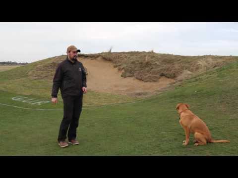 Royal Cinque Ports Golf Club 9th Bunker Renovation