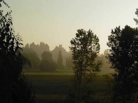John McDermott - Home From The Forest