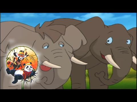 African Elephant - The Bamboo Bears