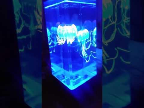 My New JINX Luminous Jellyfish Tank