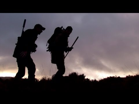 The Shooting Show -- Irish sika stag double and rabbits from field to plate